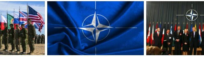 Everything about NATO
